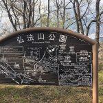 秦野市☆桜の名所『弘法山』でパワーチャージ